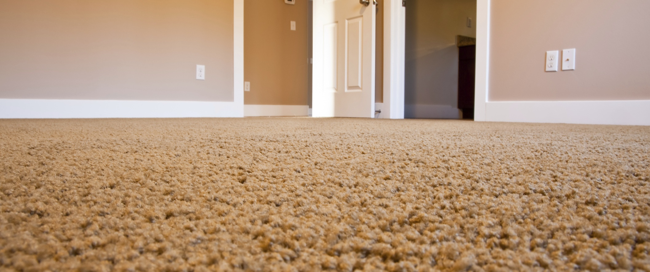 Professional Carpet Cleaning Services Hanover Pa York Pa